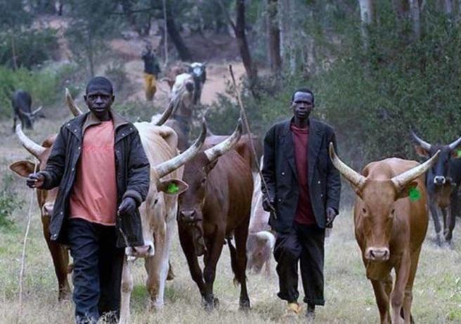 fulani-Herdsmen-848x596
